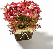 Artificial & Dried Flowers - Artificial Gerbera