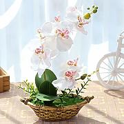 Artificial Dried Flowers - Flowers Home Decoration