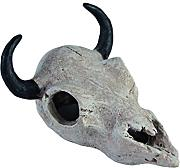 Haquoss Buffalo Skull Dekoration Aquarium, 12 x