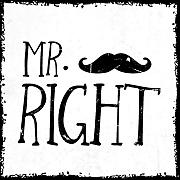 how about tee? - Mr. Right - stylischer