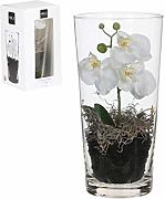 MICA Decorations Phalaenopsis, Weiss, 30