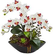 Nearly Natural 1605-WH Kunstpflanze Phalaenopsis