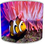Premier Lighting 20,3 cm Tisch Marine Aquarium