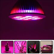 RENZHEN Phyto Lampe Vollspektrum LED Grow Light